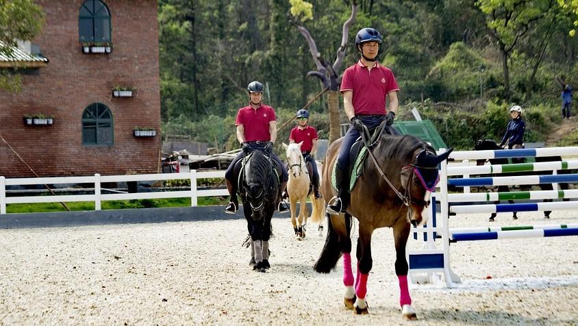Cavaliers pratiquant l'équitation