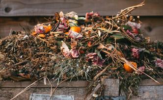 Différences entre terreau et compost