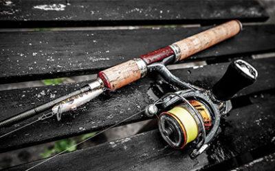 Des lacs de carpe où pratiquer la pêche en France