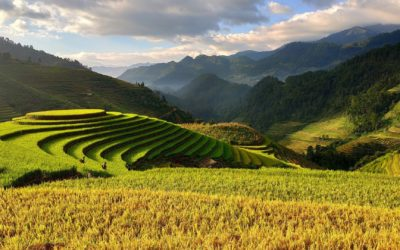 Séjour sportif au Vietnam : 3 activités de choix à expérimenter
